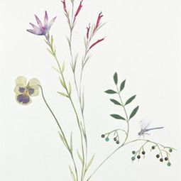 Image link to Marilla Palmer's artworks